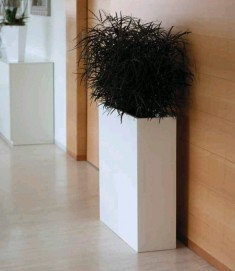 Design-Blumentopf : Kollektion WALL